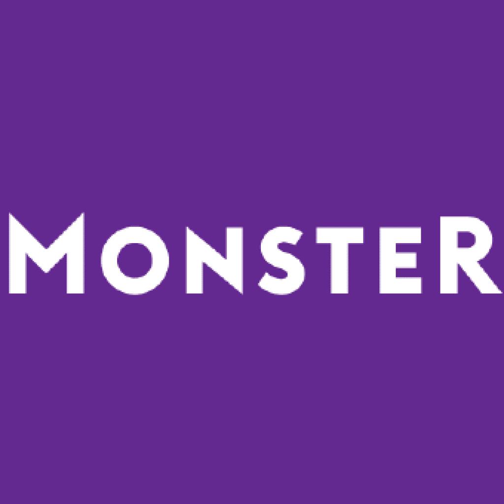 Monster a portal for digital marketing job in Meerut